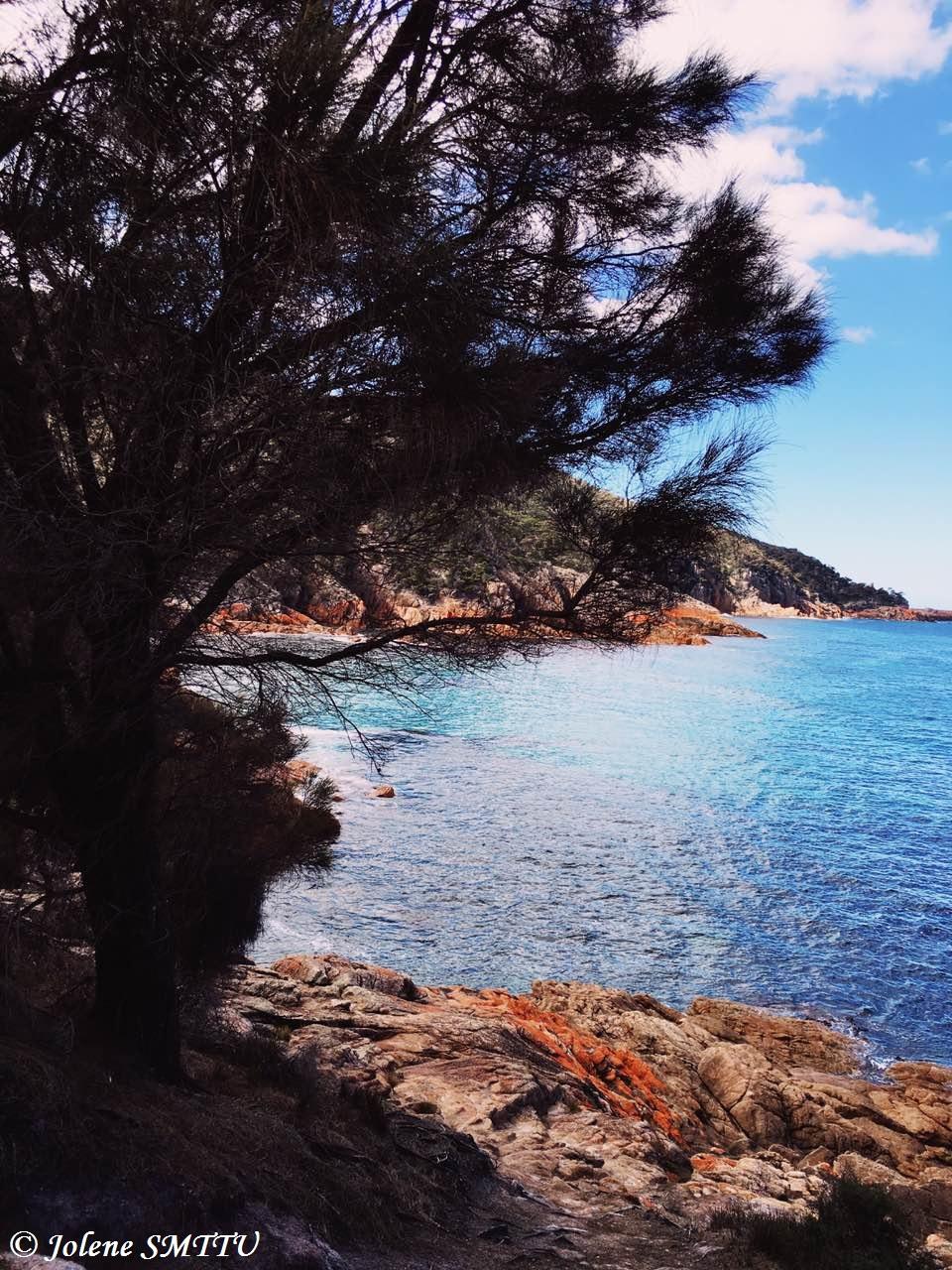 Tasmania 5