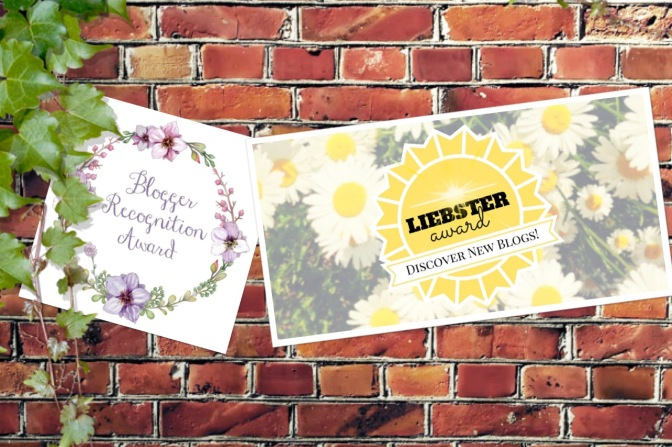 Spreading the Love – Liebster Award & Blogger Recognition Award